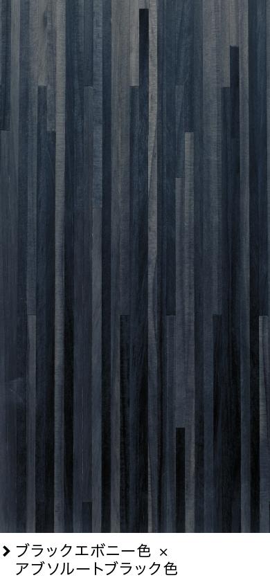 ブラックエボニー色 × アブソルートブラック色