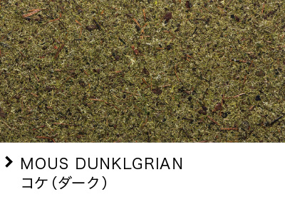 MOUS DUNKLGRIAN コケ(ダーク)