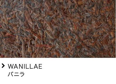 WANILLAE バニラ