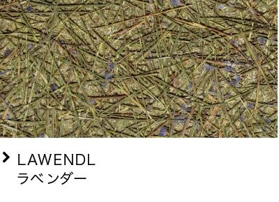 LAWENDL ラベンダー