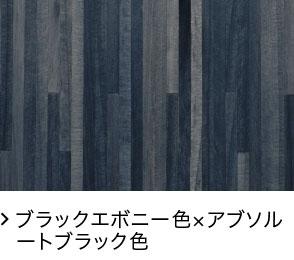 ブラックエボニー色×アブソルートブラック色