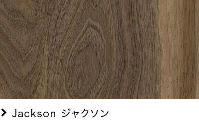 Jackson ジャクソン